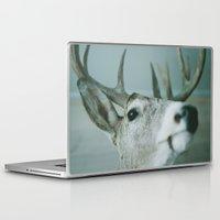 fargo Laptop & iPad Skins featuring mounted by sara montour