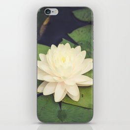 Peaceful Water Lily iPhone Skin