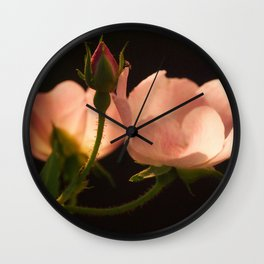 Garden Lanterns Wall Clock