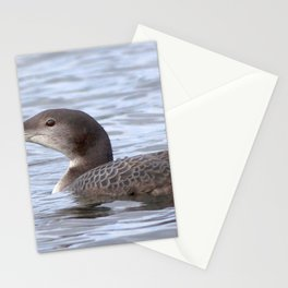 Watercolor Bird, Common Loon Juvenile 02, Pingvallavatn, Iceland Stationery Cards