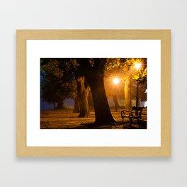 Foggy evening in the park Framed Art Print
