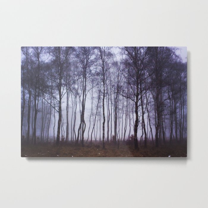 Fog through the Trees Metal Print