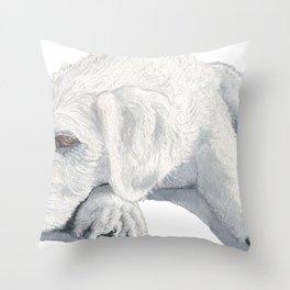 Sleepy Labradoodle Pup Throw Pillow