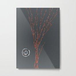 Enso Metal Print