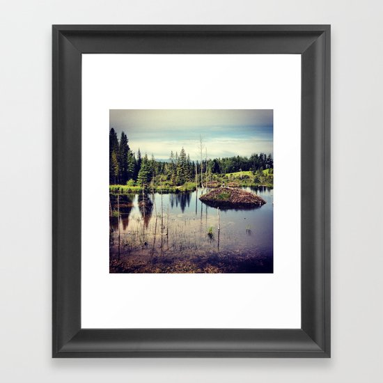 Beaver Dam Framed Art Print