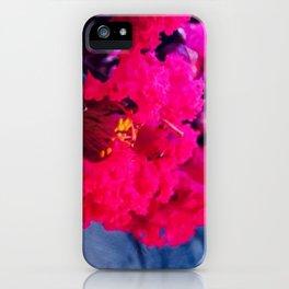 Pretty in Pink Crape Myrtle iPhone Case
