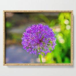 Purple + Blue Flower Serving Tray