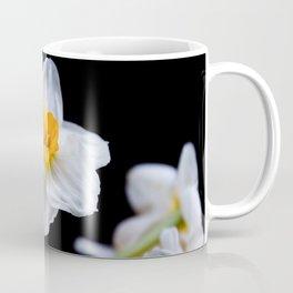 Daffodils4 Coffee Mug