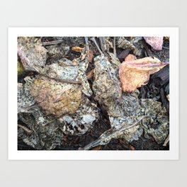 A break in the rain, dried collard green leaves Art Print