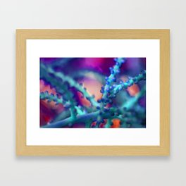 Bobble Two Framed Art Print
