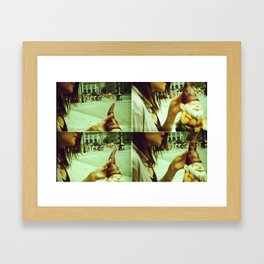 Lomography Gnome Framed Art Print