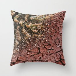 Painted Hills, OR Throw Pillow