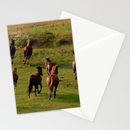 Galloping Mustangs Stationery Cards