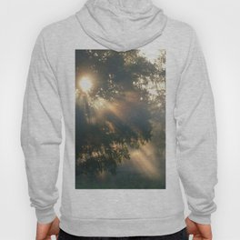 """ Heaven Shining "" Hoody"