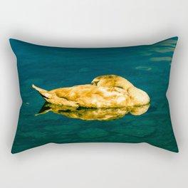 Spiegel / II Rectangular Pillow