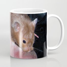The Old Hamster in the Shoe Coffee Mug