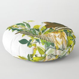 Broad Winged Hawk Floor Pillow