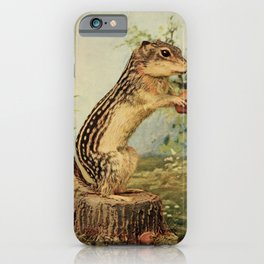 Vintage Print - Birds and Nature (1900) - Gopher iPhone Case
