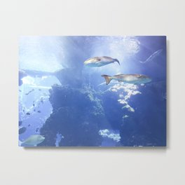View From the Bottom Metal Print