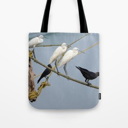 Egrets and Crows, Cochin, India Tote Bag