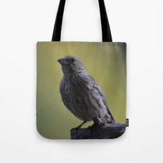 An Immature House Finch Tote Bag