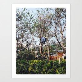 Pruning in Nan Lian Art Print