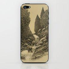 Bear Creek  iPhone & iPod Skin