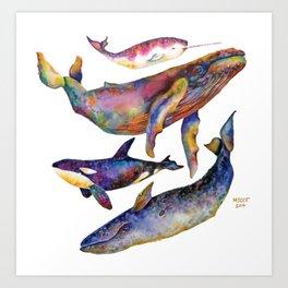 Whale Pyramid #2 Art Print