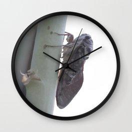 Cicada Vector Wall Clock