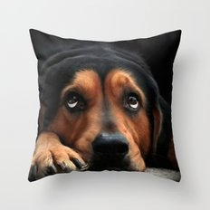 Puppy Dog Eyes Throw Pillow