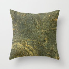 golden scales of the dragon ares   space #14 Throw Pillow