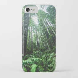 Redwood National Park- Pacific Northwest Nature Photography iPhone Case