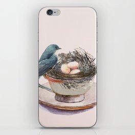 Bird nest in a teacup iPhone Skin