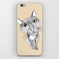 BigHead Cat iPhone & iPod Skin