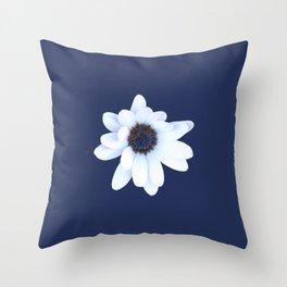 Sleepy African Daisy Flower Throw Pillow