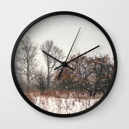 Winter apples Wall Clock