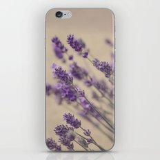 lavender dreams iPhone & iPod Skin