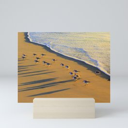 Sunset Shadow Chasing Oceanside by Reay of Light Photography Mini Art Print