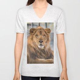 Lambert the Lion All Grown Up Unisex V-Neck
