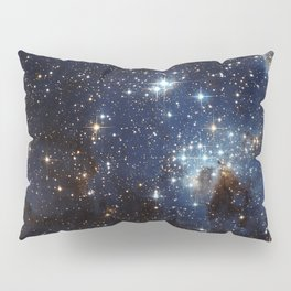 LH 95 in the Large Magellanic Cloud Pillow Sham