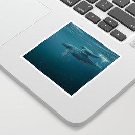 Blue Whales Sticker