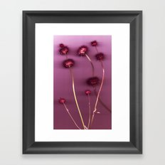 Purple Chia Framed Art Print