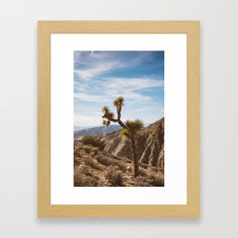 Joshua Tree National Park V Framed Art Print