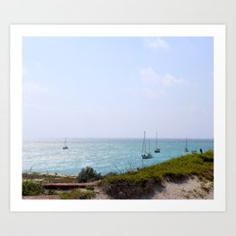 Sun Dance Cove Art Print