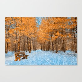 Burning Ice Forest Trail Canvas Print