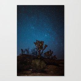 Midnight Stars at Joshua Tree Canvas Print