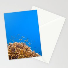 School Stationery Cards