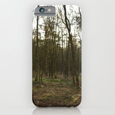Sun Glimmer iPhone 6s Slim Case