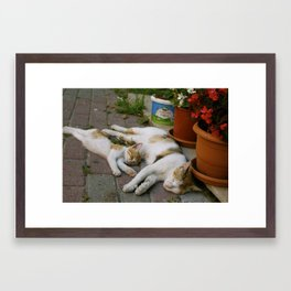 Sleepy mom and kitty Framed Art Print