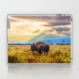 The Great American Bison Laptop & iPad Skin